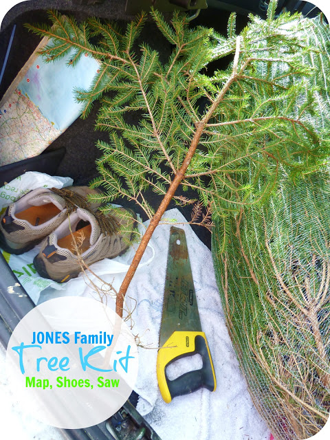 Christmas Traditions….  The Chopping Of The Tree!