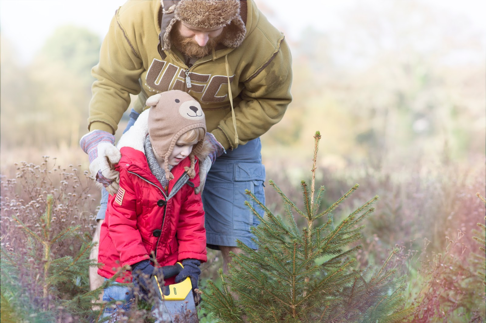 Jensen's First Christmas Tree Chop – A Rite of Passage