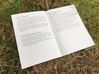 Collins Big Cat Reading Lions Review Fiction Excerpt