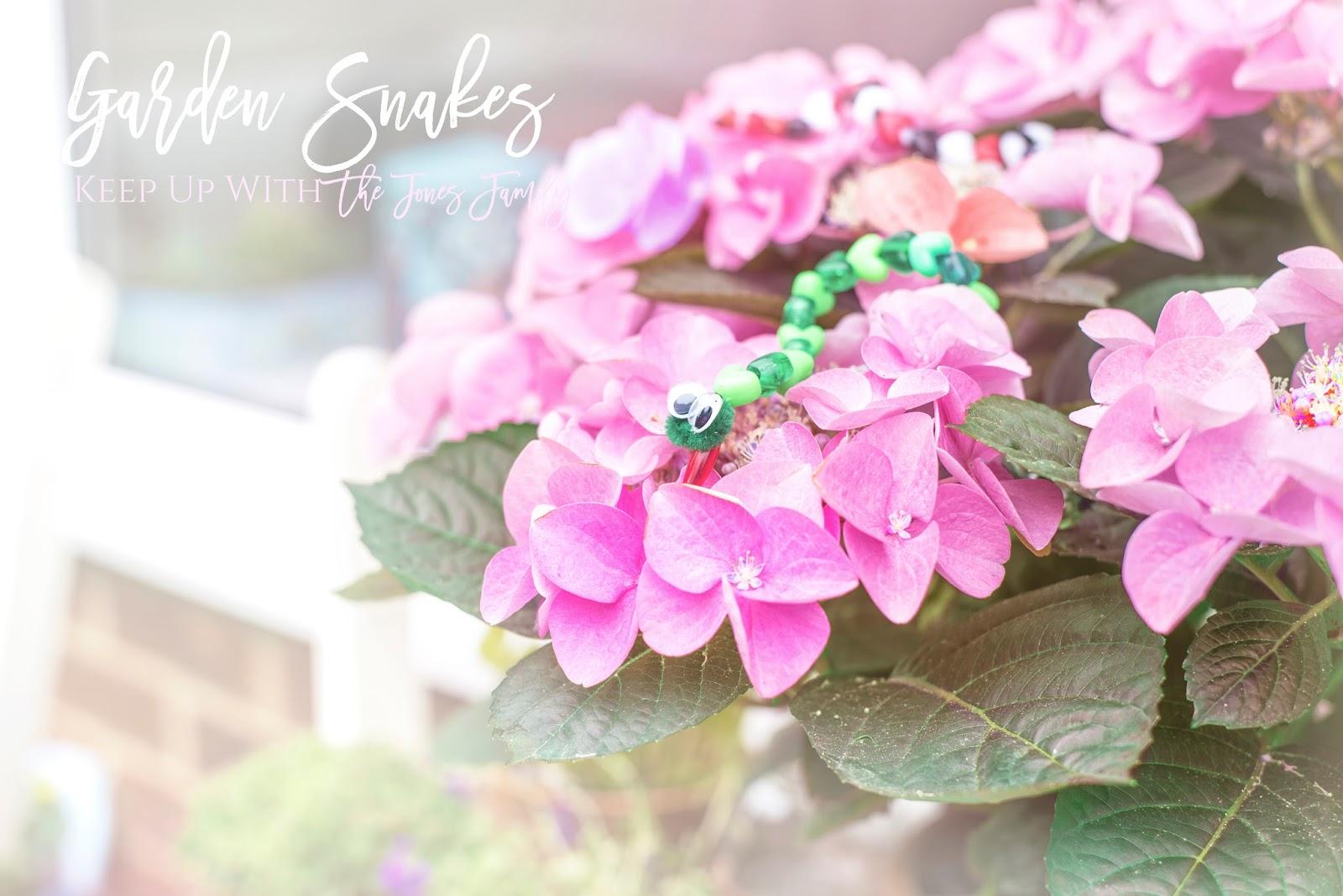gardensnakestots