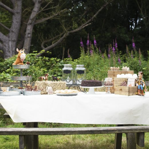 Disney Toy Story Woody Party Dessert Table