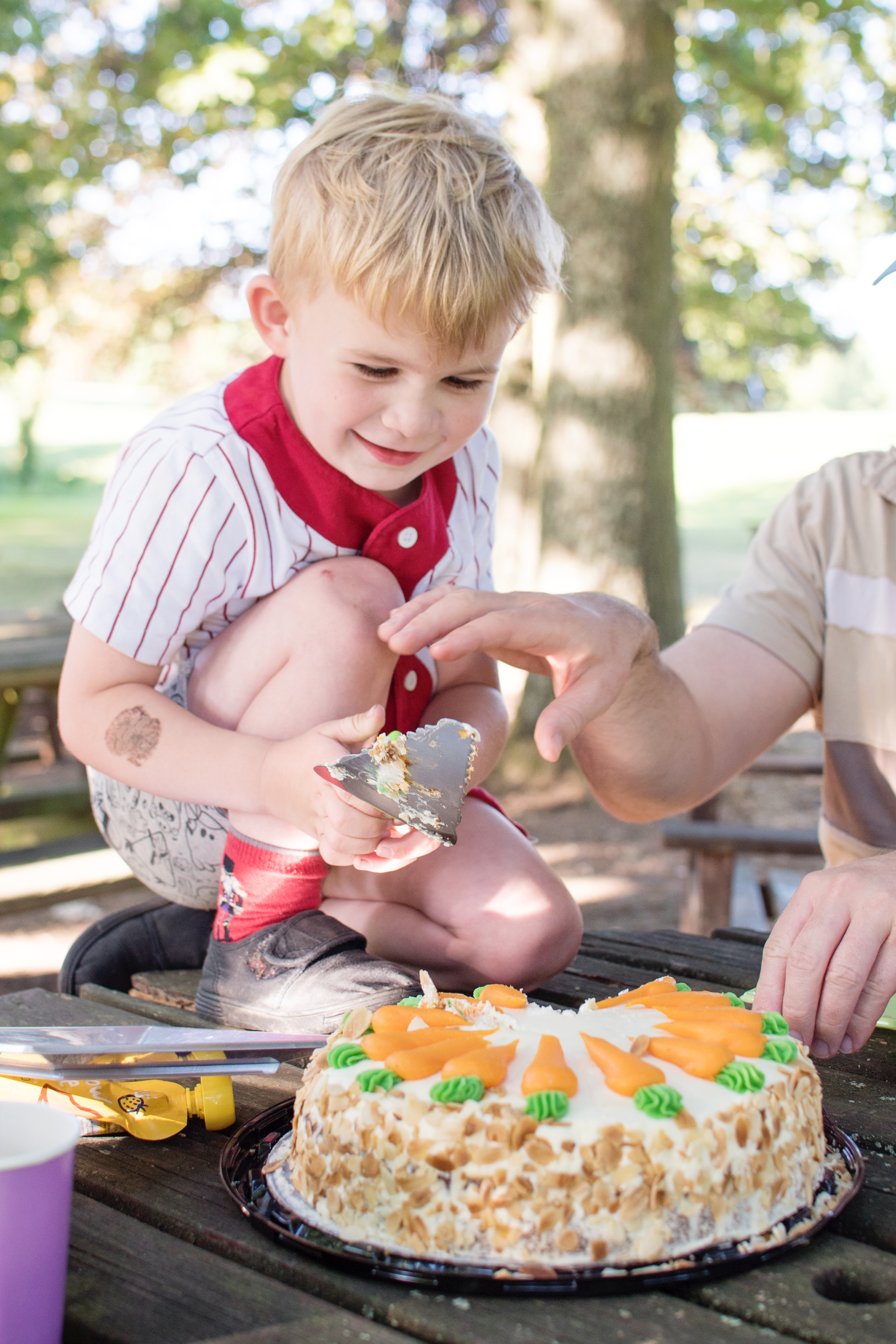 Zootropolis cake disney birthday