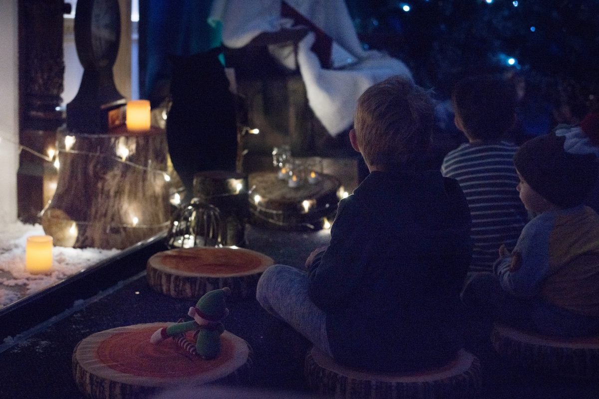 Marwell Zoo Christmas Experience