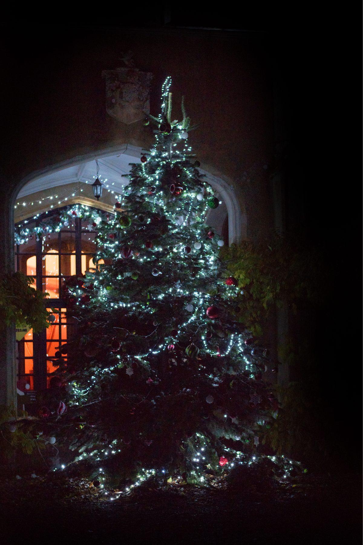 marwelltree