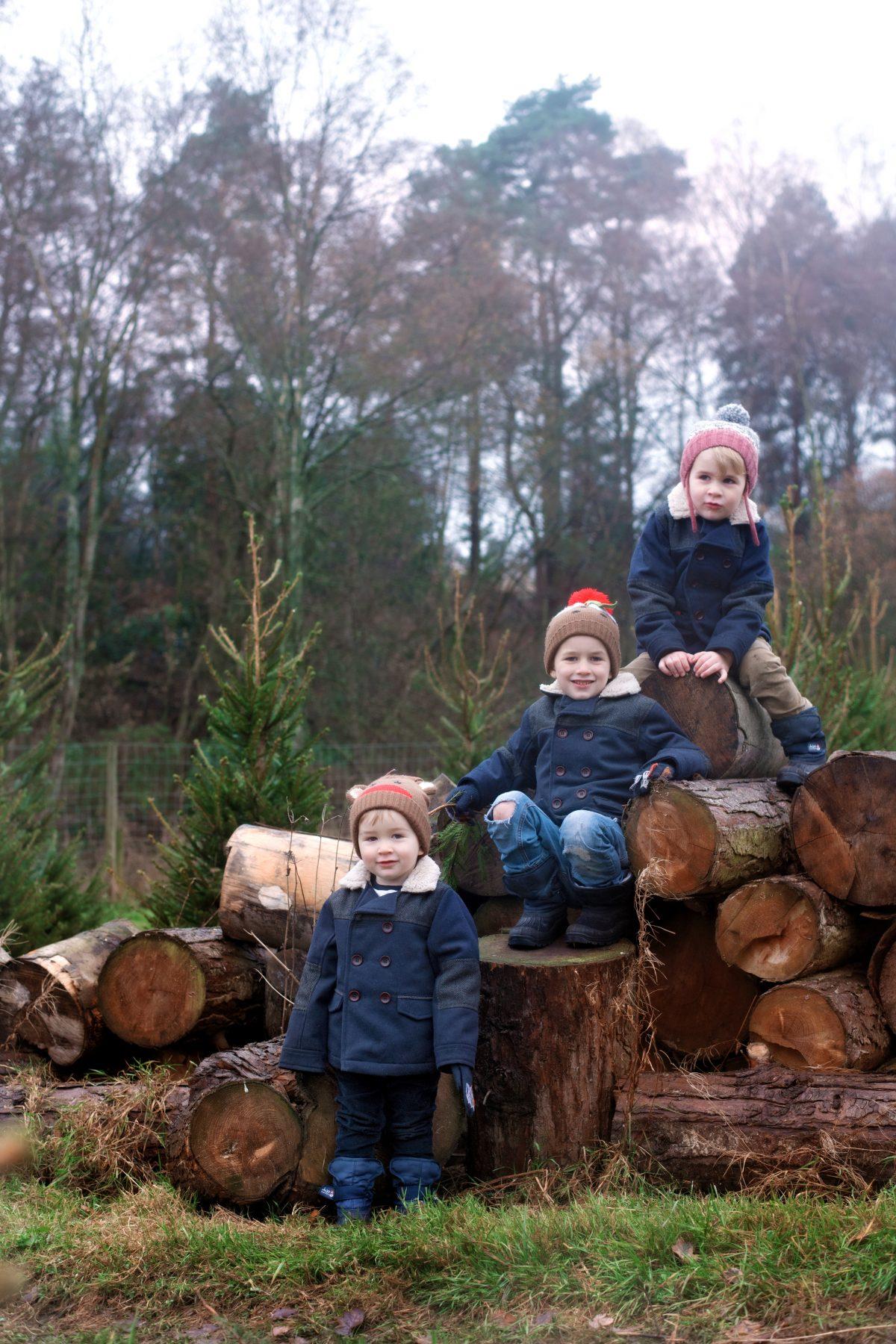 boots mini club Christmas tree farm england hampshire
