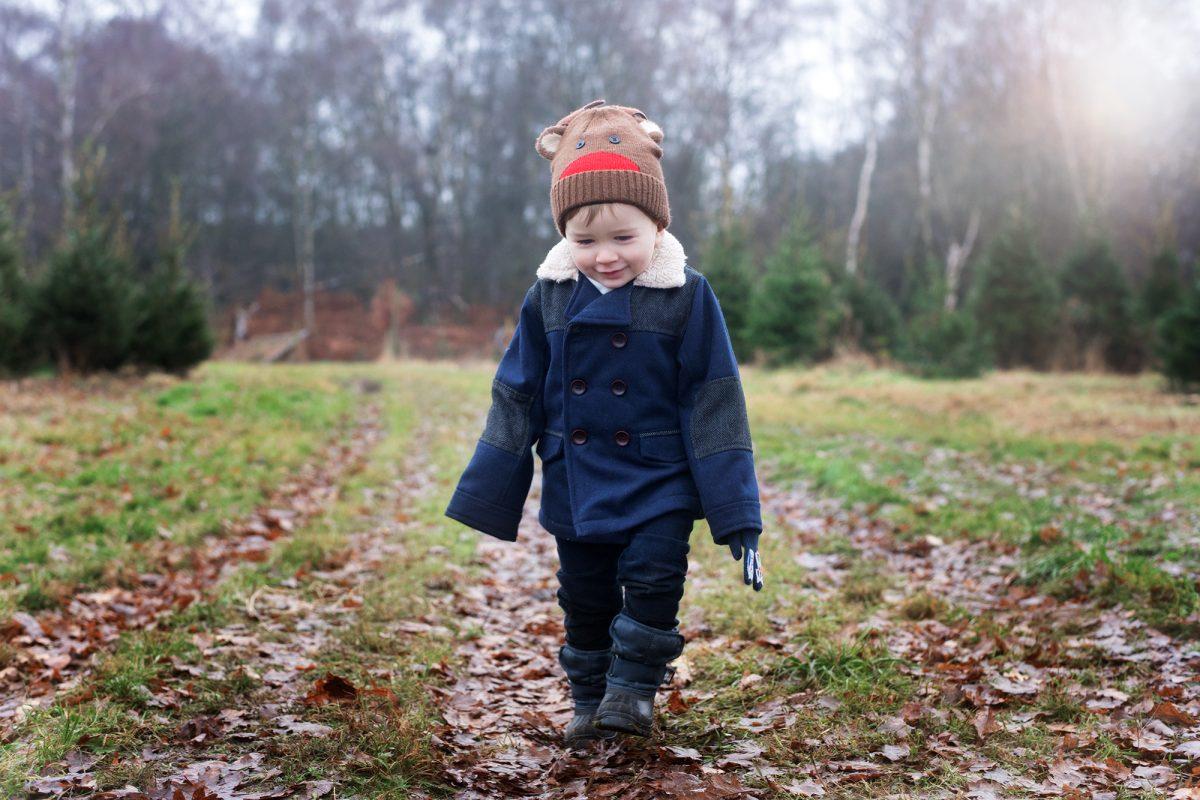 Christmas tree farm england hampshire