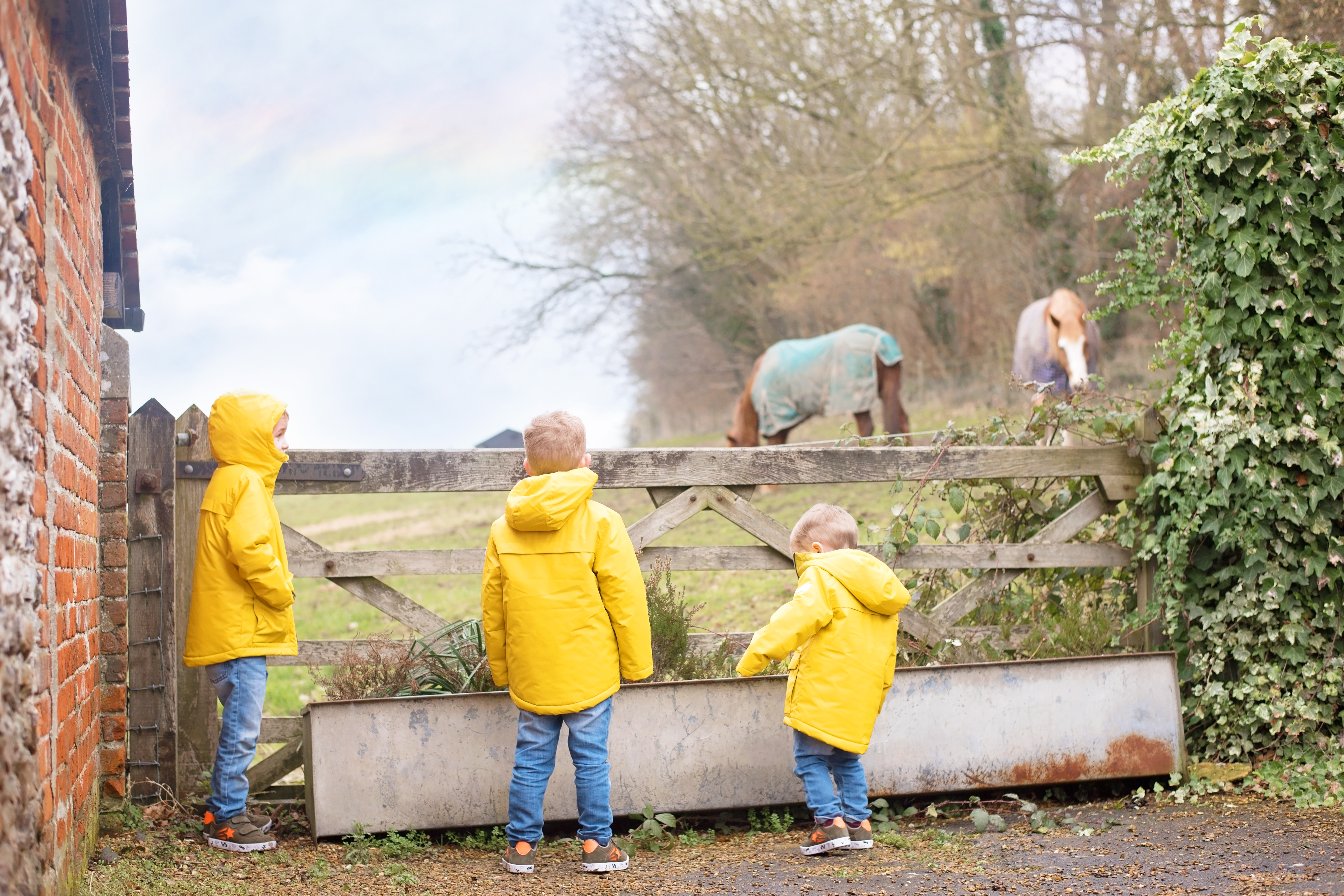 FUN ON THE FARM WITH NEXT KIDS AND BOCKETTS FARM