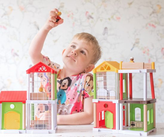 brio world family home
