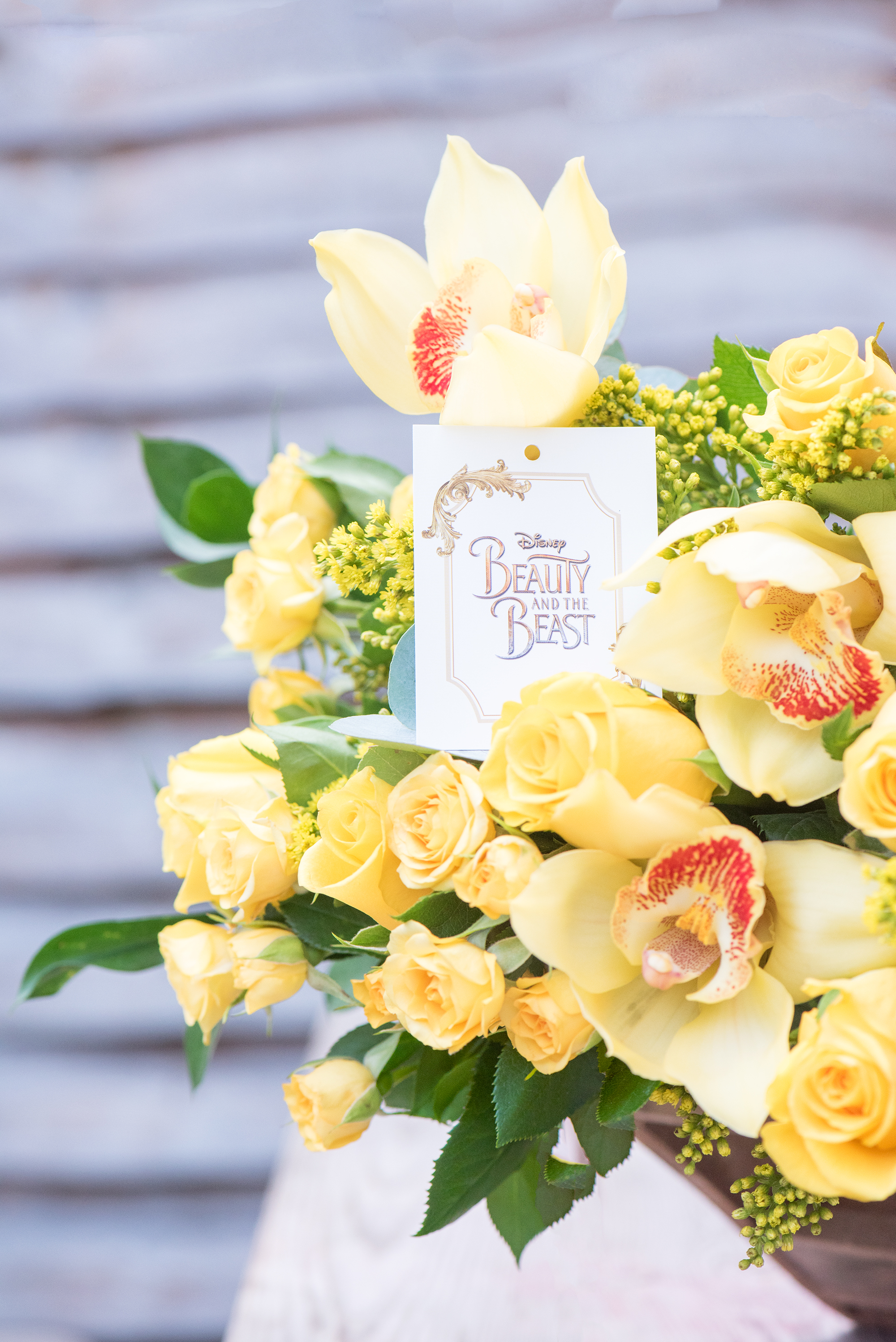 FLOWERS FOR A PRINCESS: A BEAUTY AND THE BEAST SURPRISE