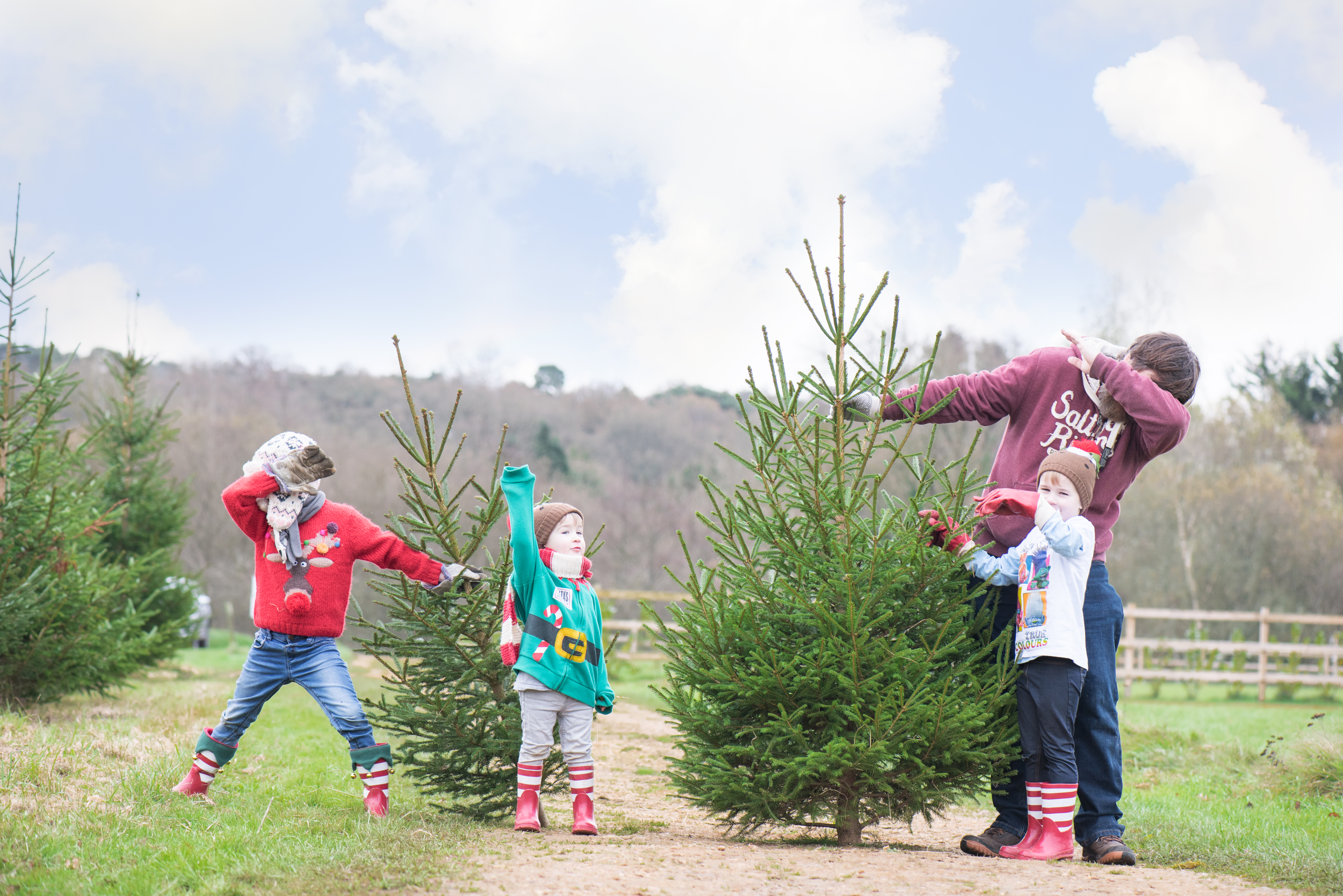 Headlands Farm Fishery Christmas Tree Farm