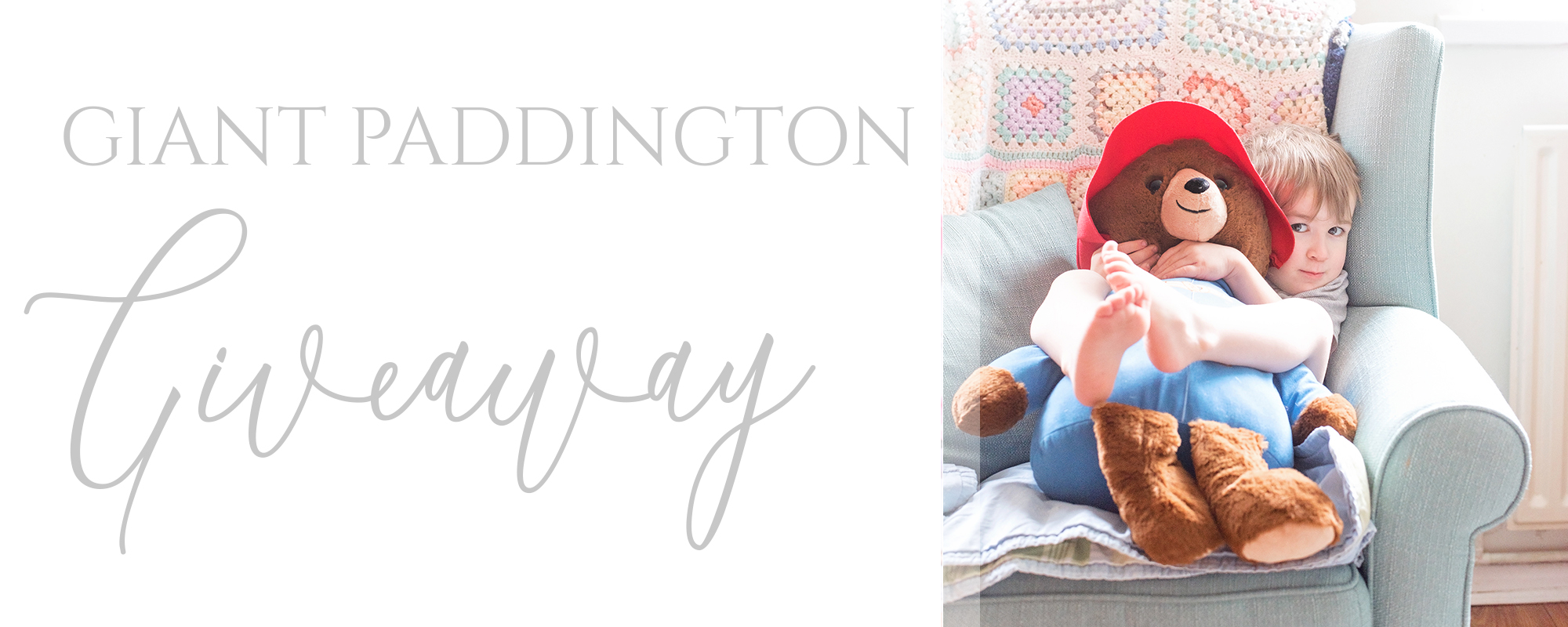 paddington bear plush giveaway