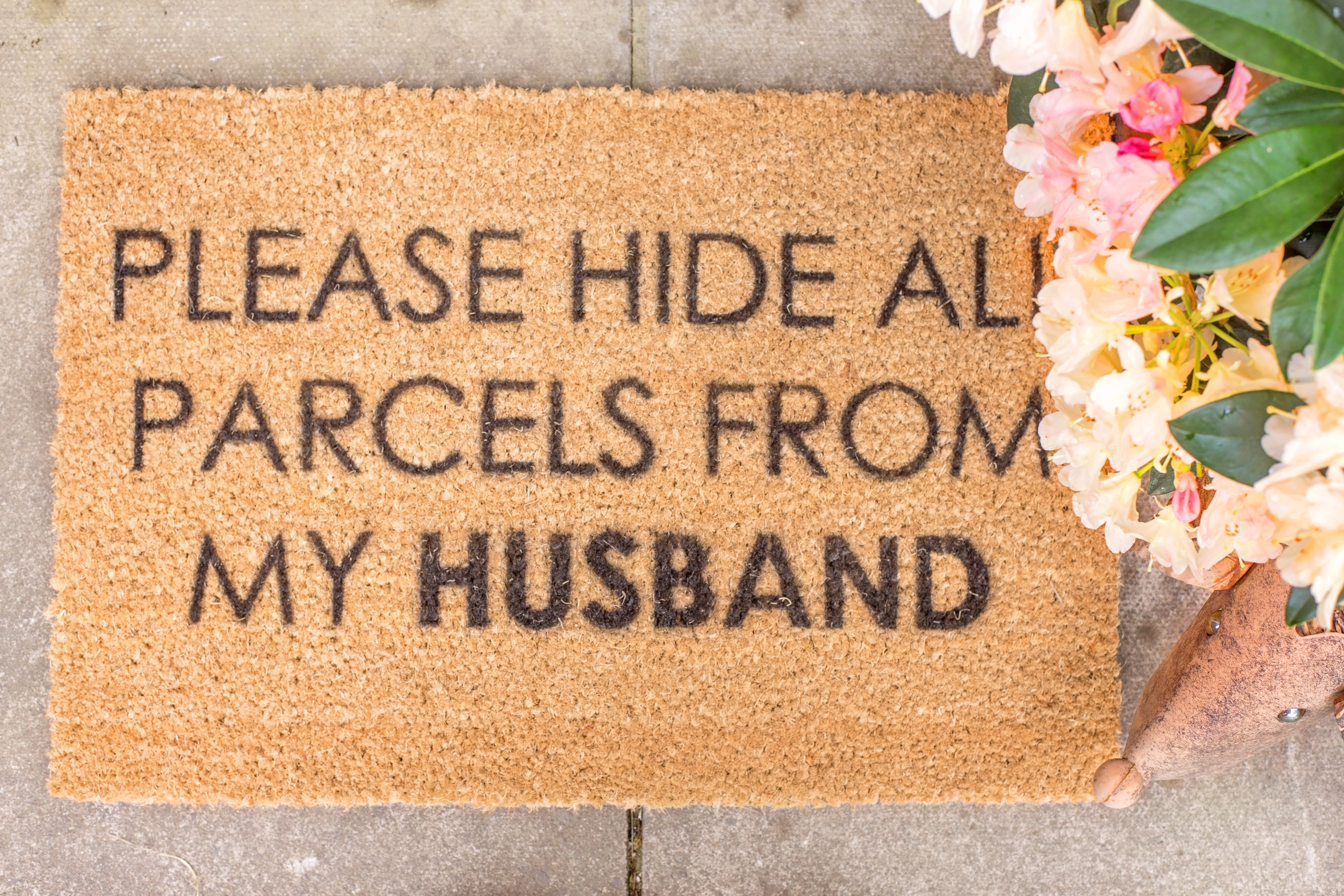 wayfair doormat