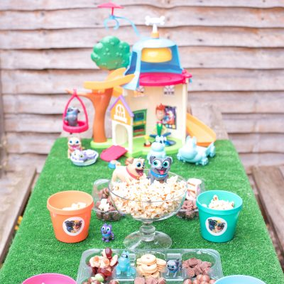 DISNEY JUNIOR PUPPY DOG PALS PARTY