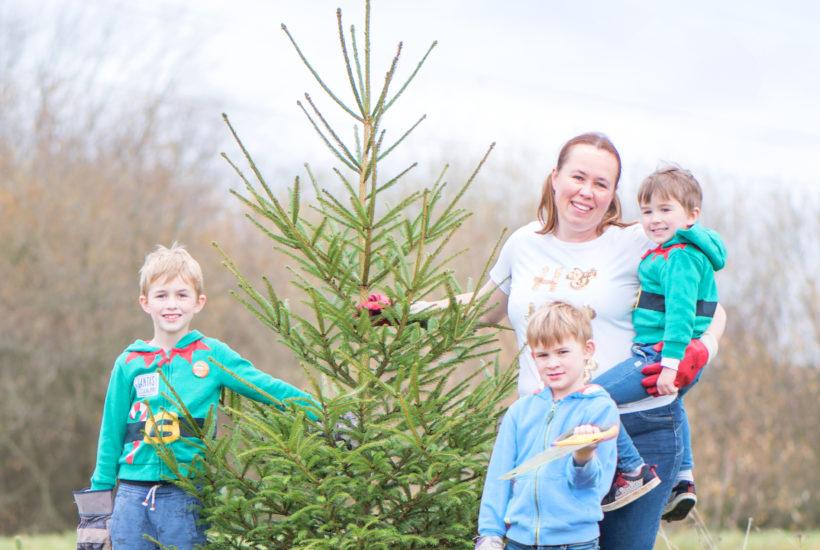 christmas tree farm 2018