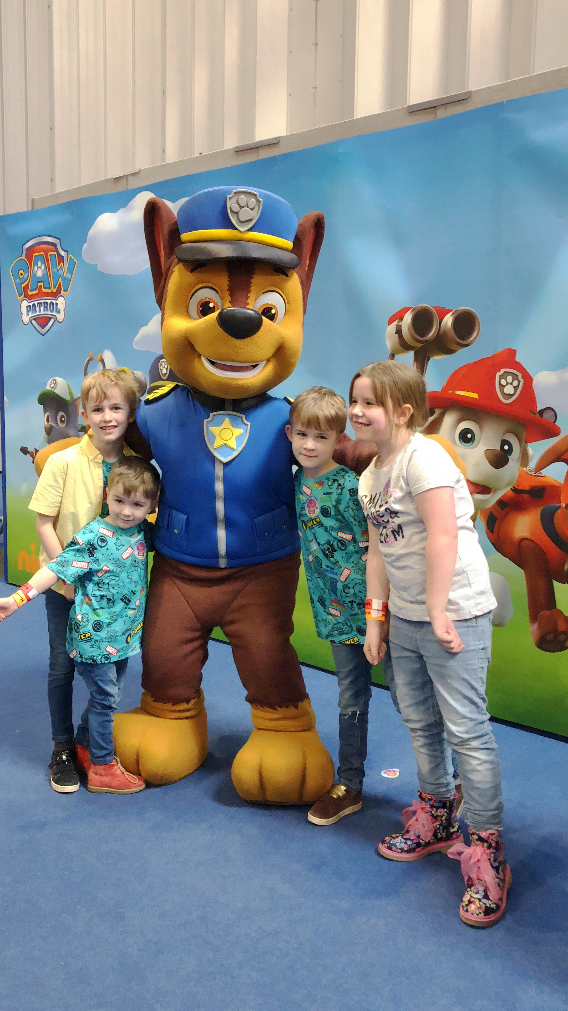 PAW PATROL LITTLE HEROES PAW AWARDS 2019