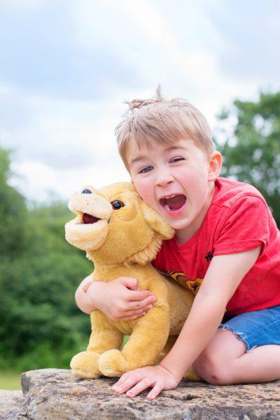 just play lion king simba talking plush