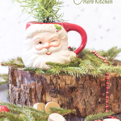 FATHER CHRISTMAS HERB KITCHEN [DIY]
