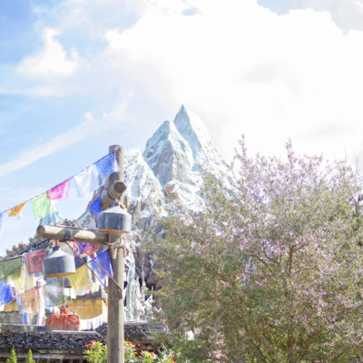 EXPEDITION EVEREST – DISNEY'S ANIMAL KINGDOM THEME PARK