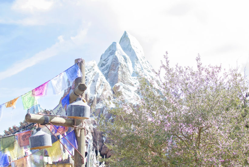 EXPEDITION EVEREST prayer flags disney world