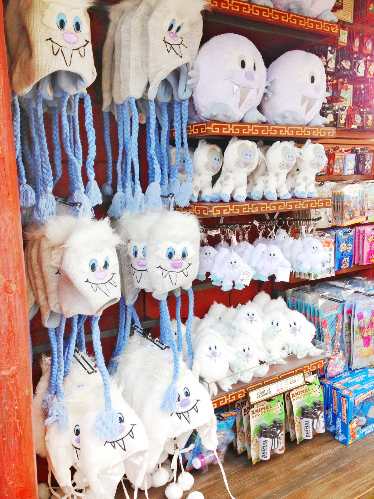 EXPEDITION EVEREST merchandise yeti hats and purses