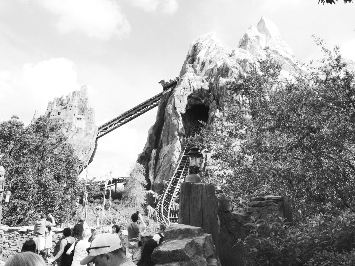 expedition everest backwards rollercoaster black and white animal kingdom