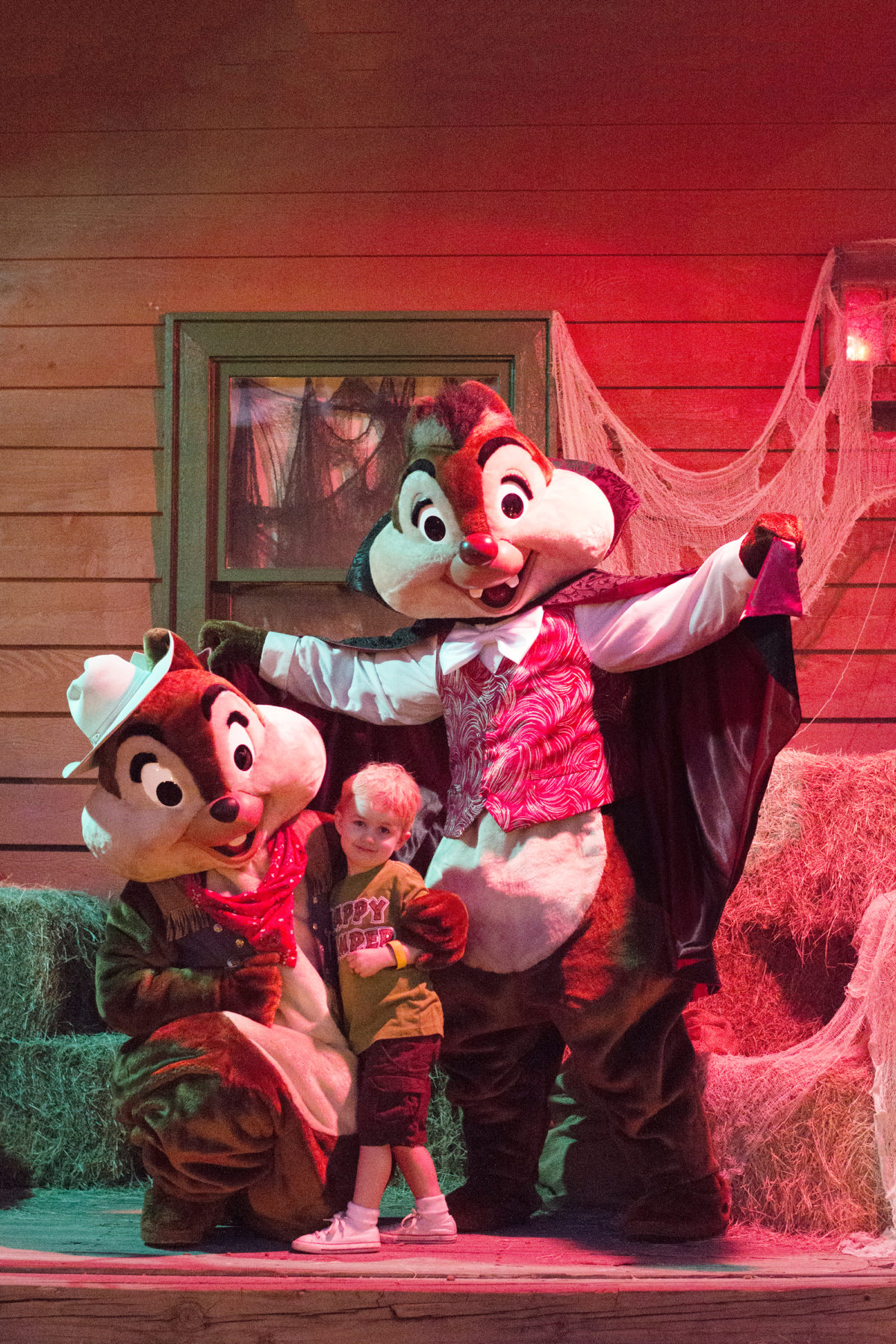 Hallowe'en fun at Chip 'N' Dale's Campfire Sing-A-Long