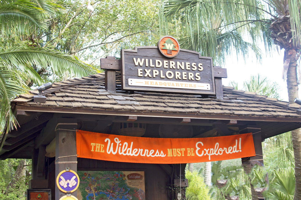 The Wilderness Must be explored! Disney's Animal Kingdom