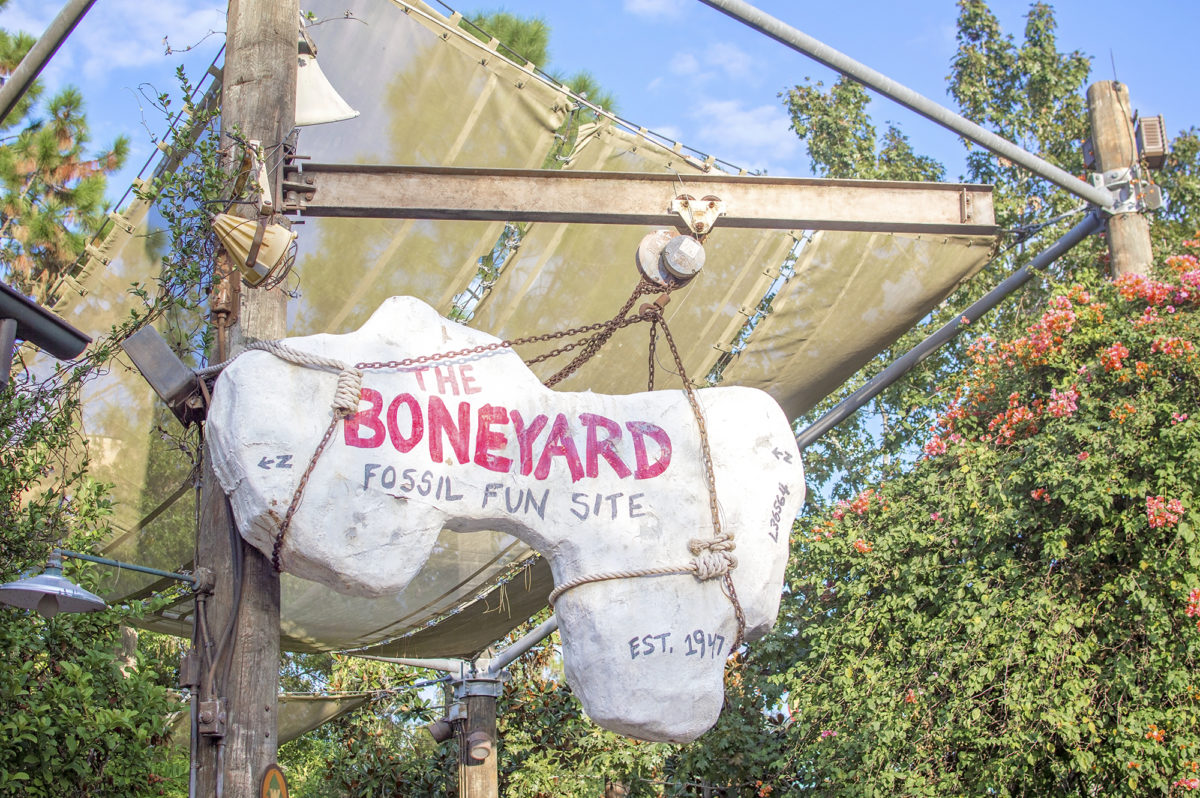 Disney's Animal Kingdom Boneyard Playground