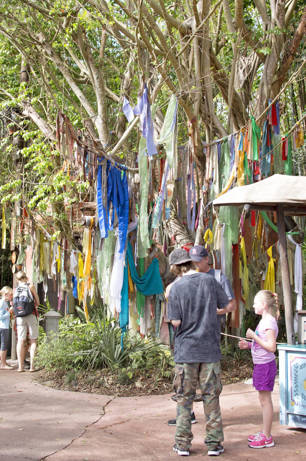 Disney's animal kingdom theming