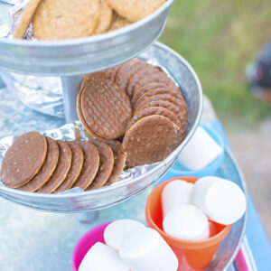 Smores making station. Giant marshmallows, chocolate biscuits