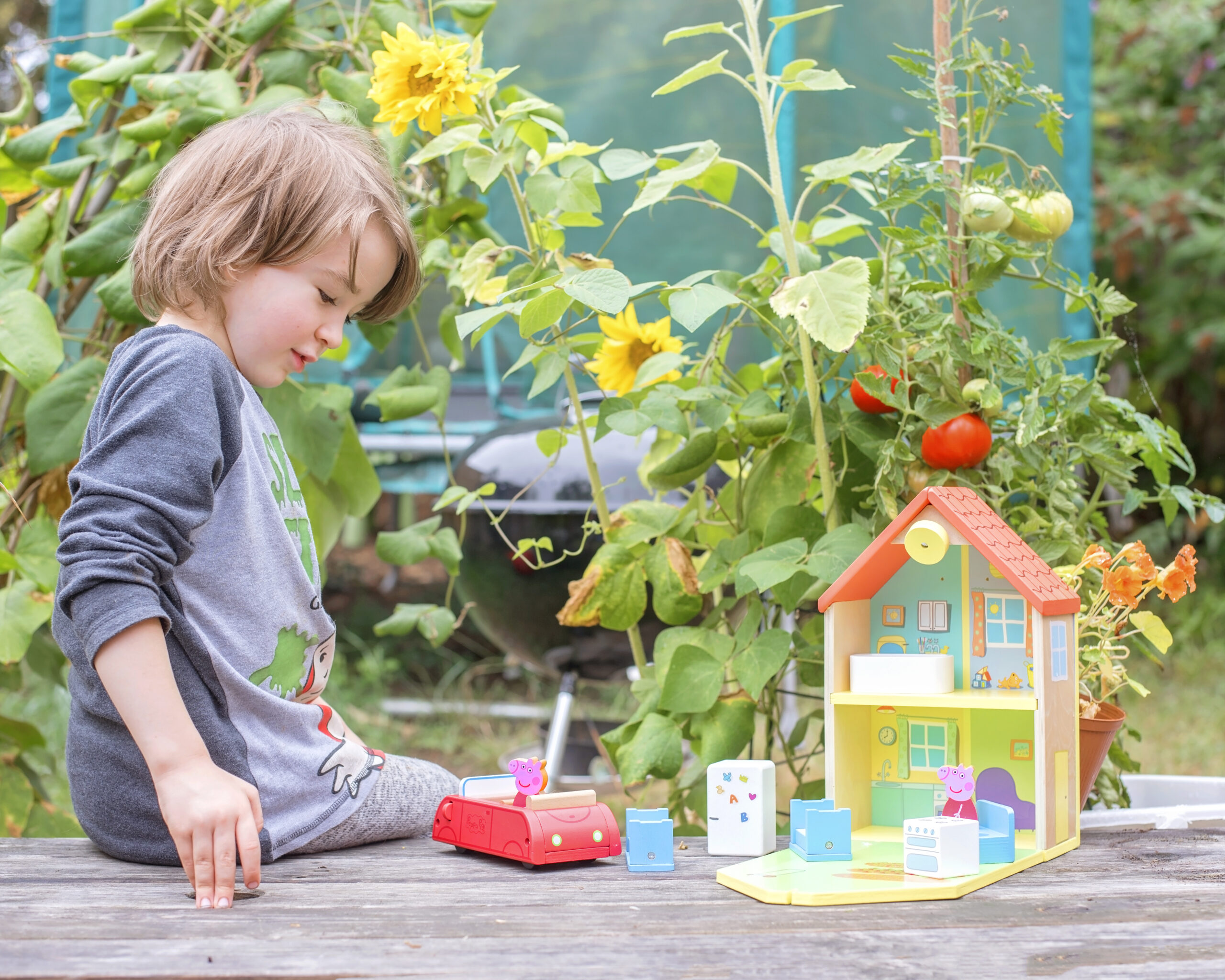 THE WONDERFUL WOODEN WORLD OF PEPPA PIG