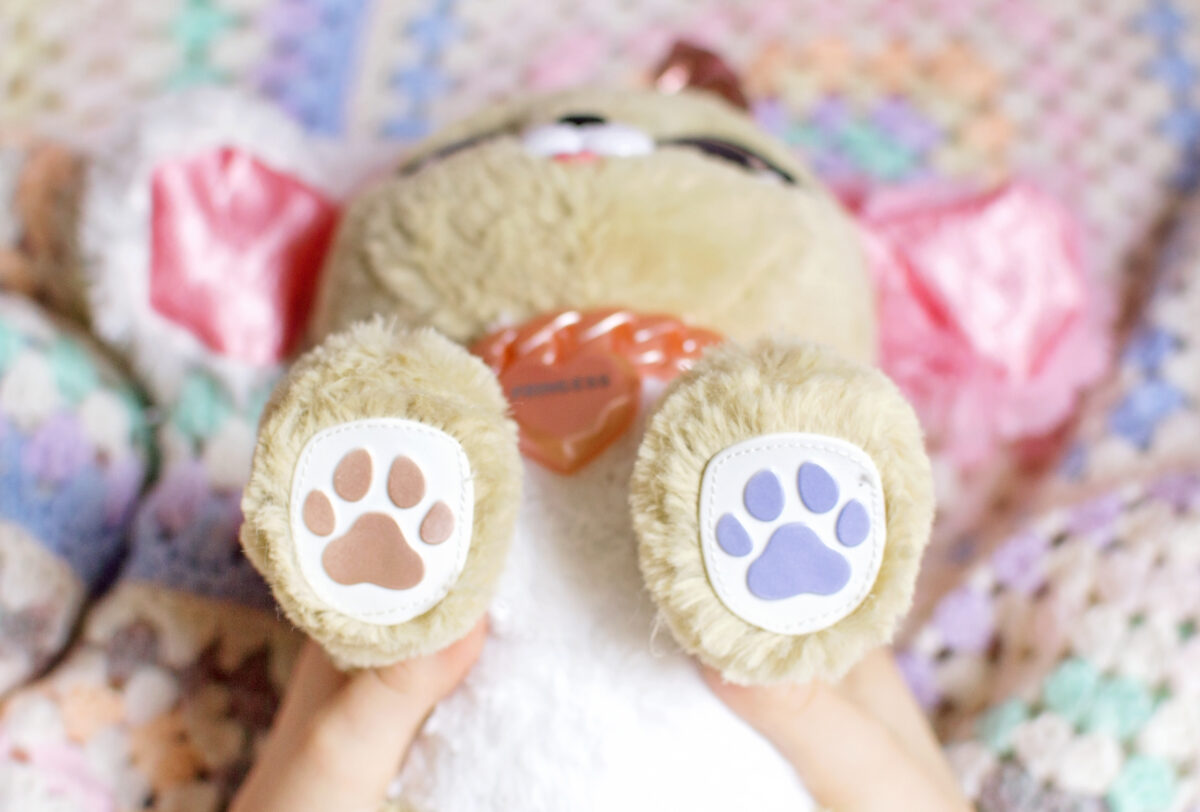 Present Pet Pup Paws Spinmaster