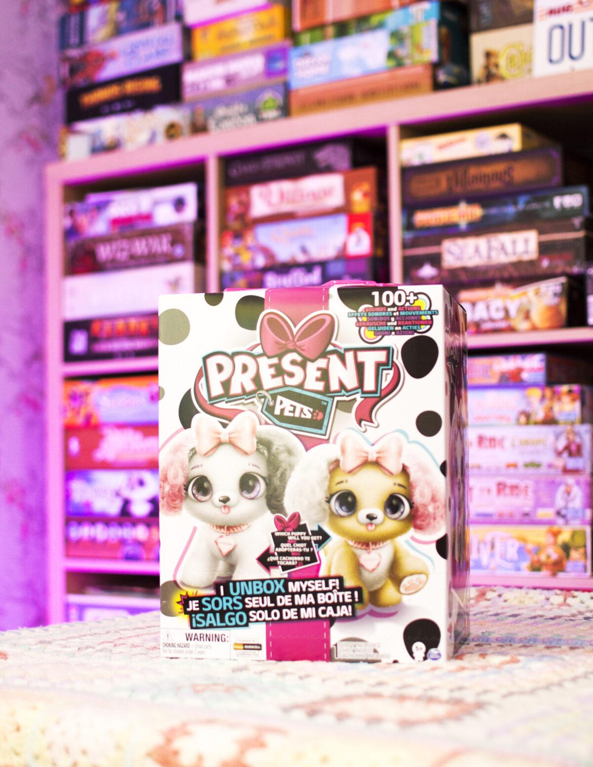 Present Pets Box