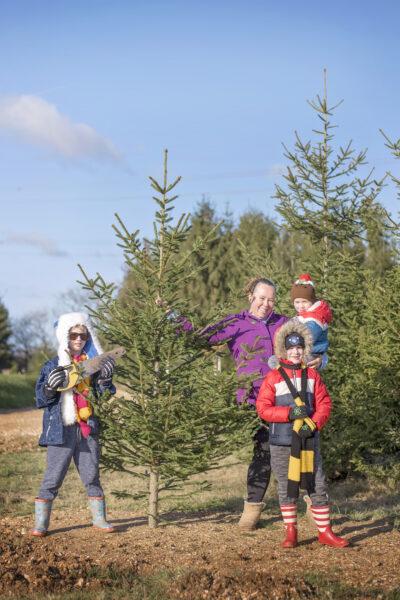 christmas tree farm romsey