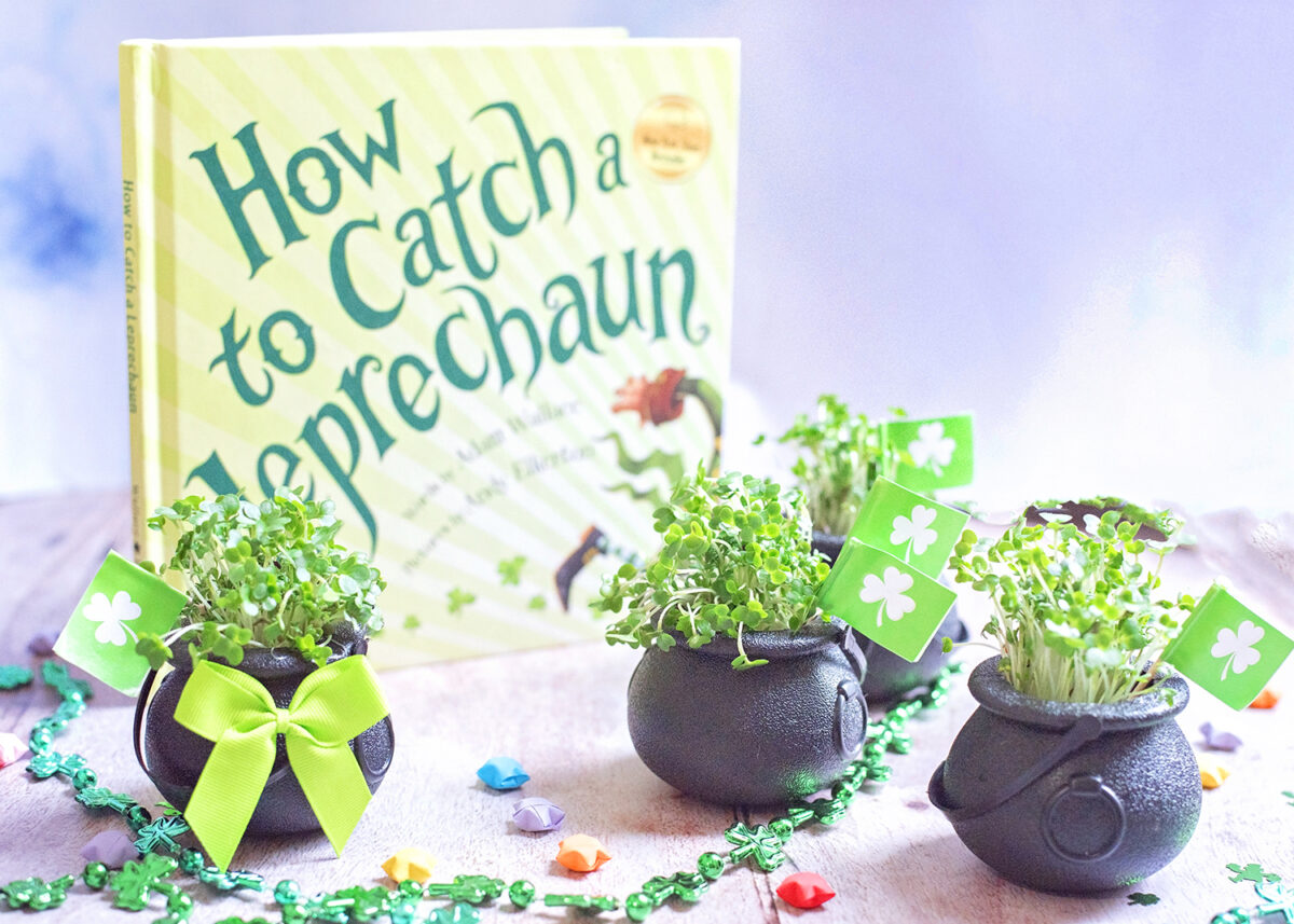 Cress shamrock pots craft DIY for kids. Last minute projects to celebrate St. Patrick's day at home