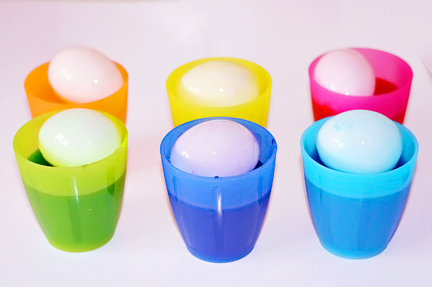 Image shows floating white eggshells being coloured in food dye in plastic, rainbow coloured cups.  How to dye eggs for Easter.